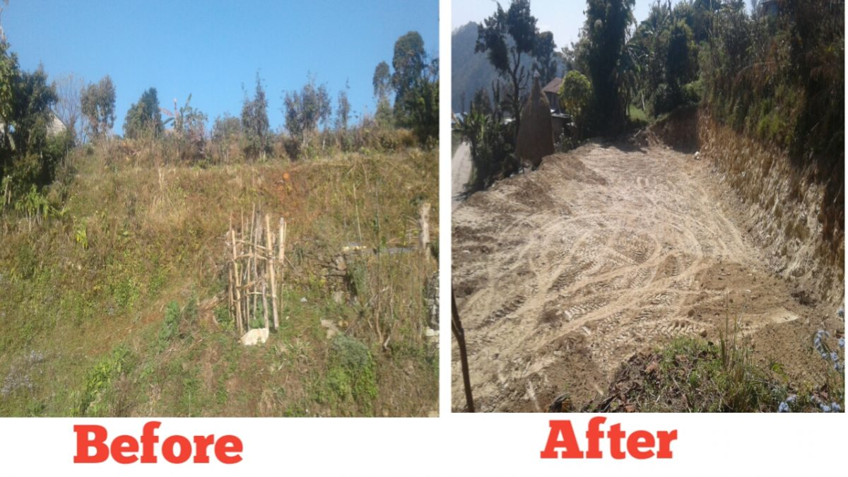 Before and After landscape change it