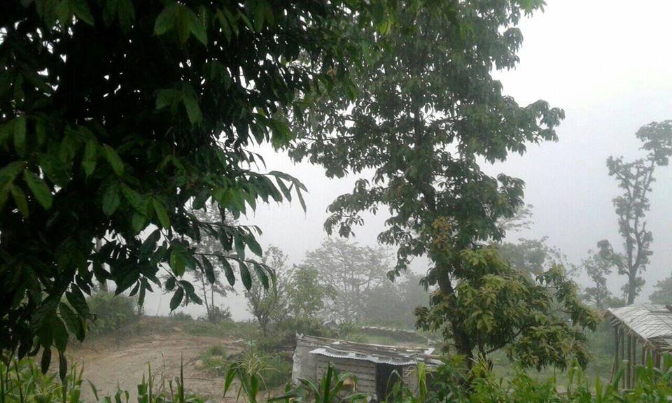 Heavy Rainfall in Arba Vijaya Today