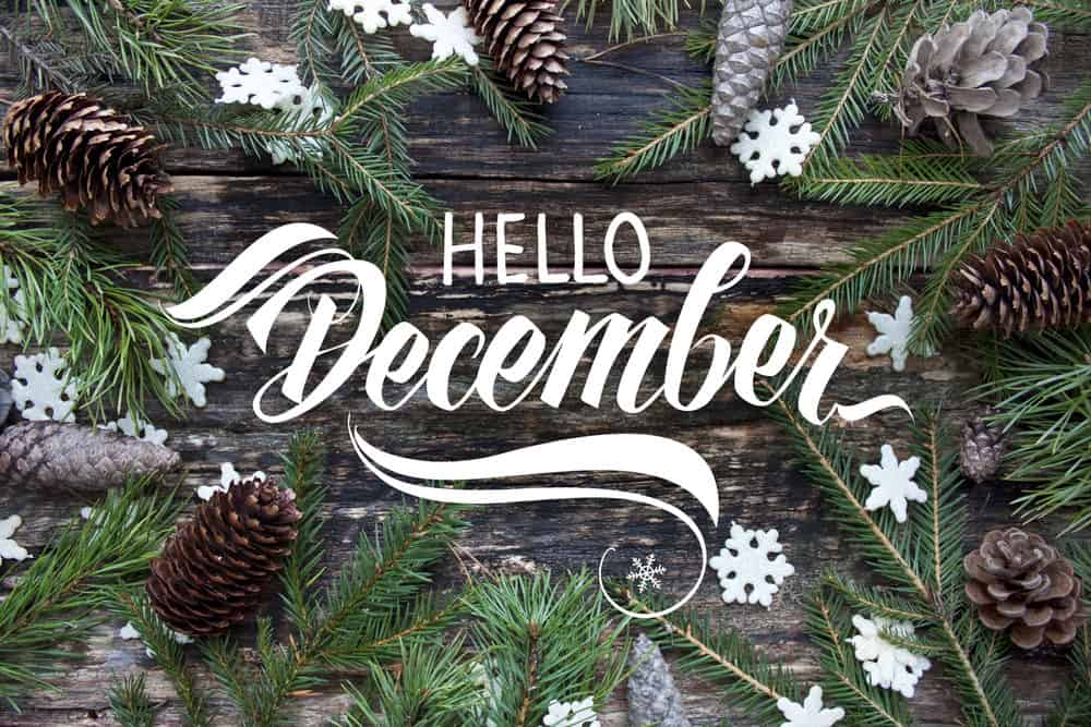 Welcome to December 2020